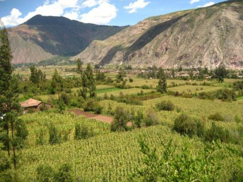 Jallp'a Ecolodge Sacred Valley Photo