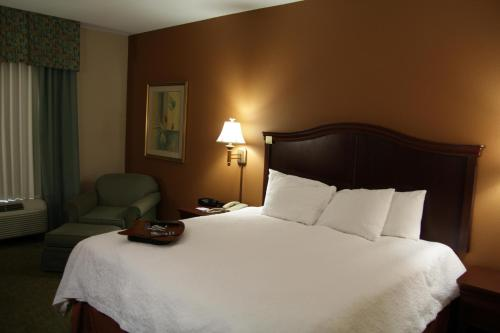 Hampton Inn Corpus Christi - Northwest I-37 Photo