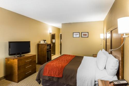 Comfort Inn & Suites Dalton Photo