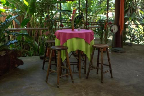 Caribbean Paradise Eco-Lodge Photo