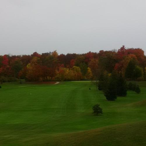 Forest Golf Club & Inn
