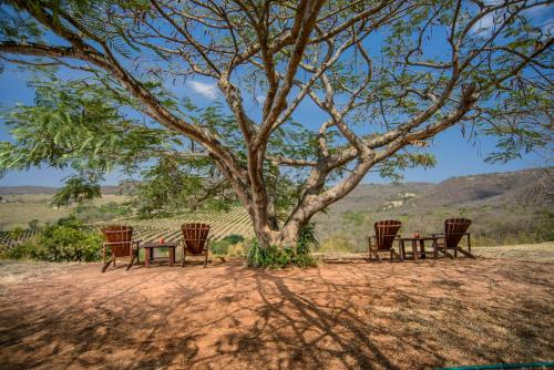 Abangane Guest Lodge Photo