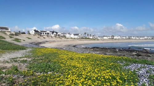 Lampies Baai Photo