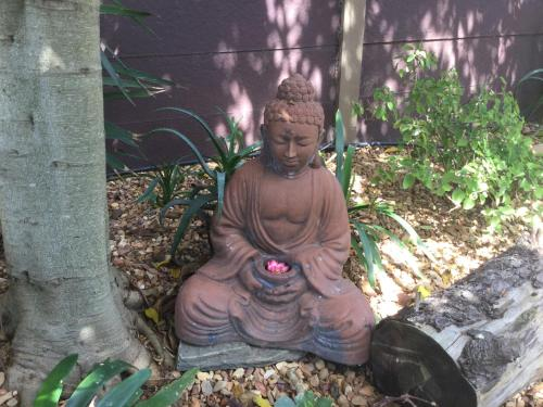 The Buddha Garden Photo