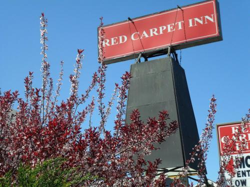 Red Carpet Inn Brooklawn Photo