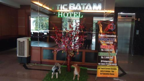 Cittic Hotel Batam photo 65