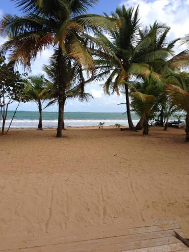 Beach Front Apartment Rio Mar Puerto Rico, Рио-Гранде