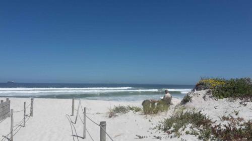Dolphin Beach Bloubergstrand Photo