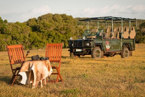 Temba Private Game Reserve Photo
