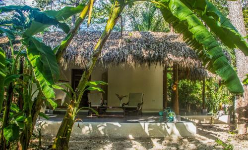 Banana Beach Bungalows Photo