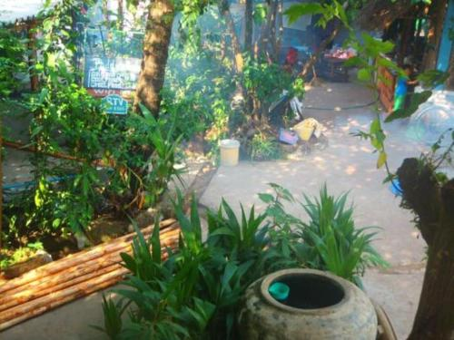 Paddy's Bamboo Guesthouse, Koh Kong