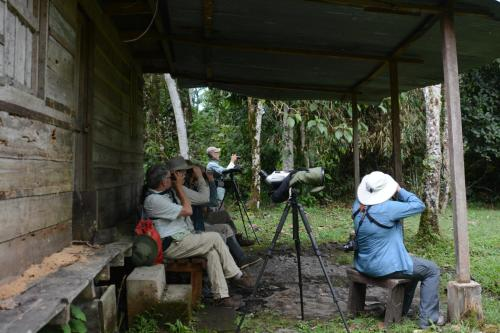 Birdwatchers House y Lodge Photo
