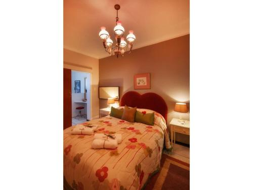 Graceland Self-Catering Cottages Photo