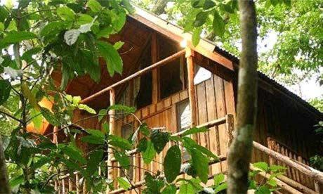 Olympos Bayrams Tree Houses tatil