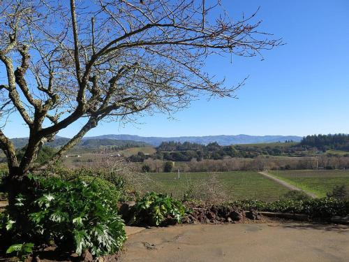 Vineyard Views at the KC House - Healdsburg, CA 95448
