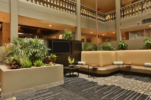 Doubletree by Hilton McAllen Photo