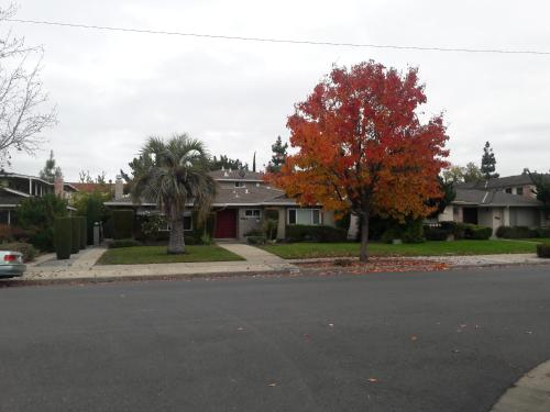 Cupertino Business and Event House