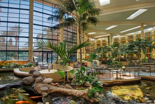 Embassy Suites Phoenix - Biltmore photo 6