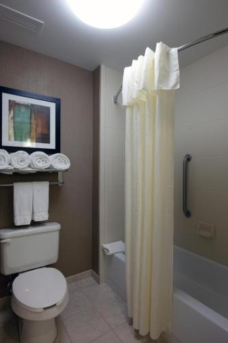 Homewood Suites by Hilton St. Louis - Galleria Photo