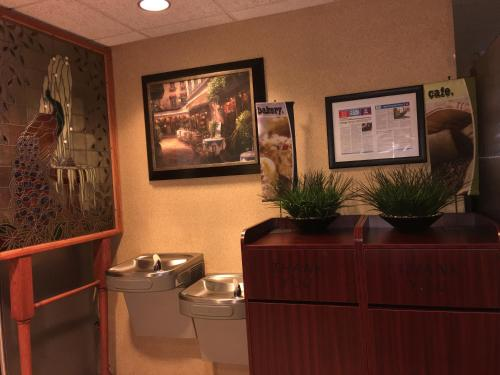Microtel Inn & Suites by Wyndham Indianapolis Airport photo 4