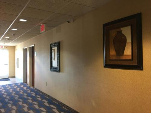 Microtel Inn & Suites by Wyndham Indianapolis Airport Photo