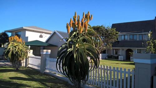 Seaforth Guesthouse Photo