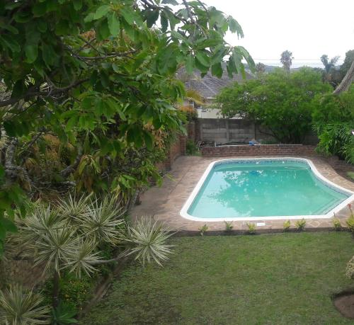 Palm Tree Guesthouse Photo
