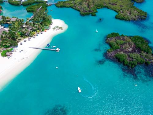 Constance Le Prince Maurice - 4 of 62