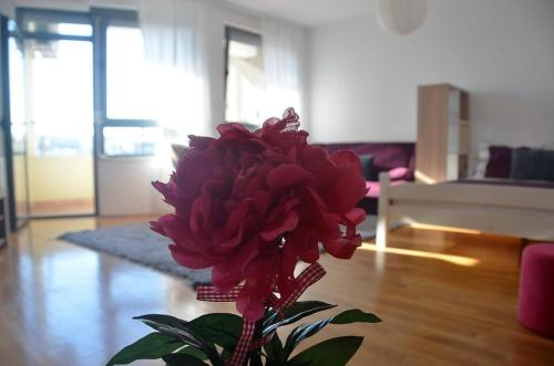 L&B Studio Apartment, Prisztina