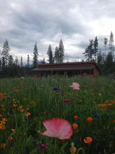 Willow Ranch Valemount Photo