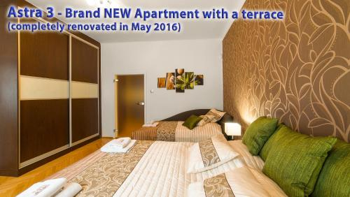 Astra 3 - Large Apartment with Terrace photo 18