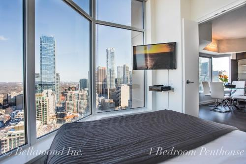 Bellamond Yorkville Photo