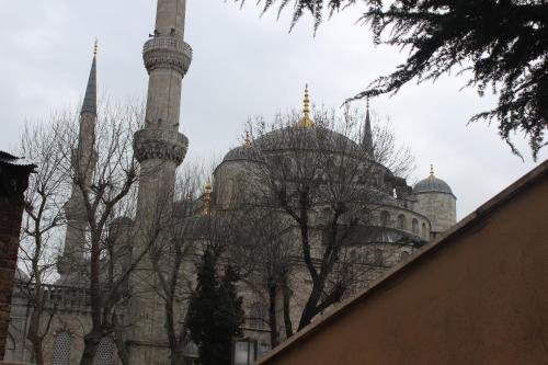 İstanbul Tala Istanbul Suites rooms
