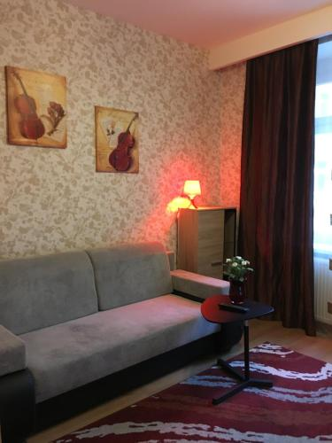 Studio Apartment Medena