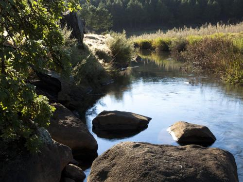 Whispering Waters Photo