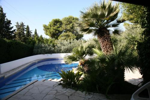 Villa Aurea Bed and Breakfast