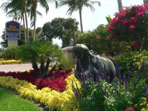 Best Western Naples Inn & Suites Photo