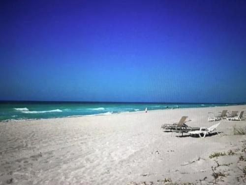 The Beach on Longboat Key Photo