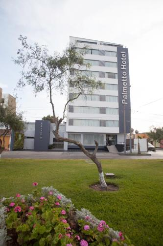 Palmetto Hotel Business San Miguel Photo