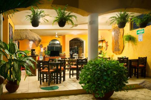 Hotel Bosque Caribe, 5th Av. zone Photo