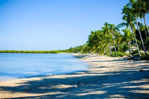 Nalamu Beach, Vuda Point, Lautoka 679, Fiji.