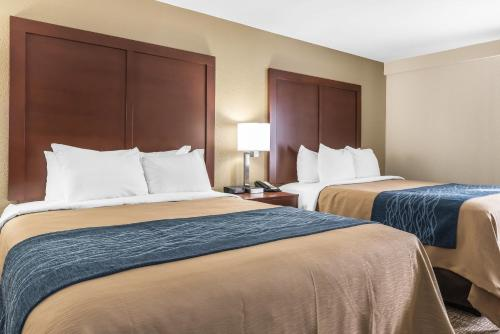 Comfort Inn Indianapolis North - Carmel Photo