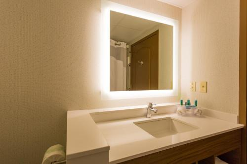 Holiday Inn Express Hotel & Suites Reading Photo