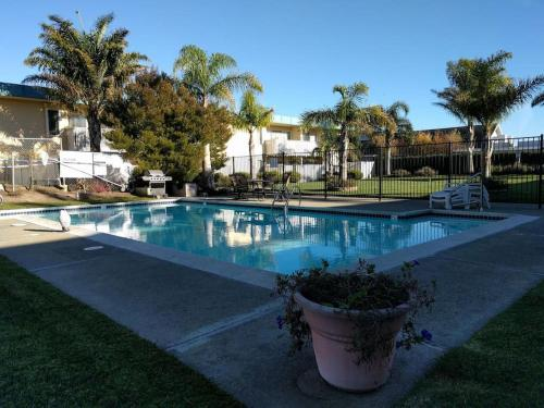Cozy 1 BR Serene Waterfront View in Silicon Valley - Foster City, CA 94404
