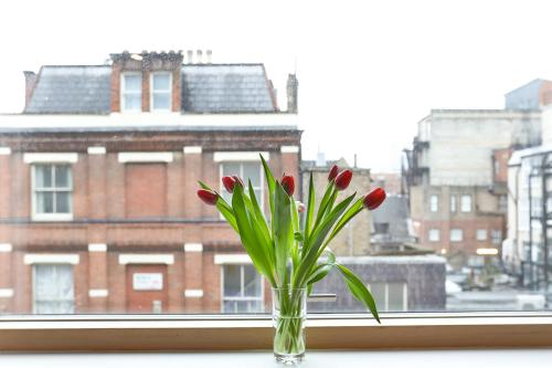 5 Star Central London 3 Bedroom Apartment photo 9