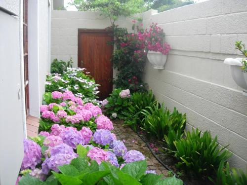 32 Musson Street Cottage Photo