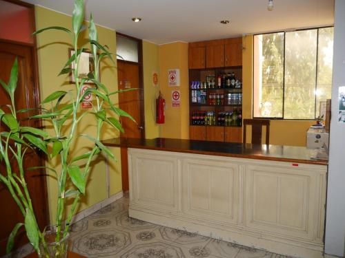 Hostal Las Palmeras Photo