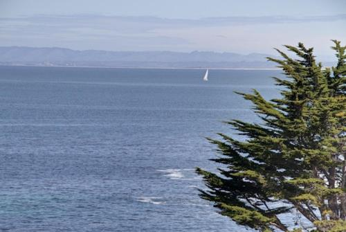 Sanctuary by the Bay - Three Bedroom Home - 3096 - Pacific Grove, CA 93950
