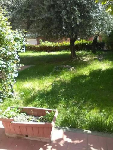 Braccianese Guest House photo 7