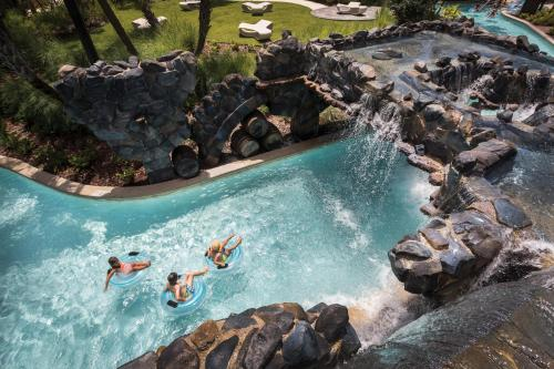 Four Seasons Resort Orlando at Walt Disney World Resort photo 19
